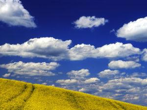 Himmel_wolken_feld
