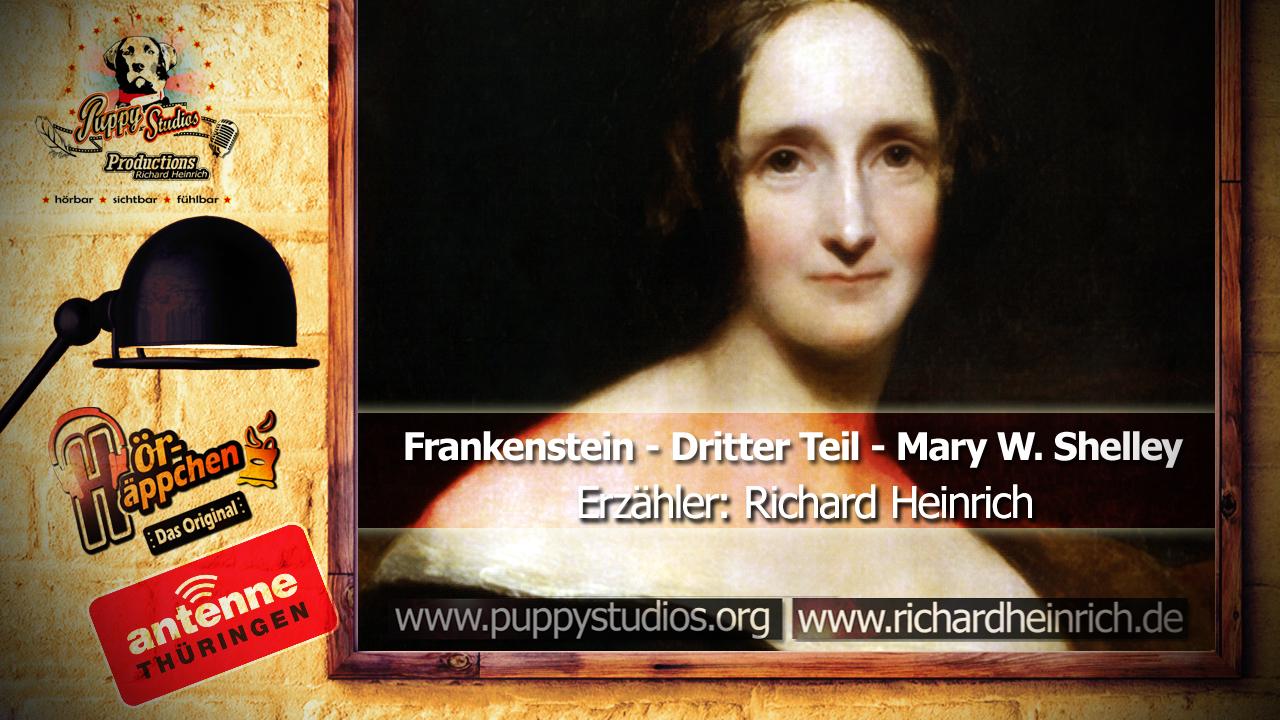Frankenstein - Mary Shelley Lesung - Hör-Häppchen auf Antenne Thüringen - Dritter Teil - Hörbuch